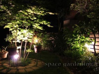 ライトアップ 照明 庭