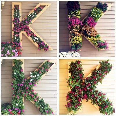 花壇 プランター 花 玄関周り