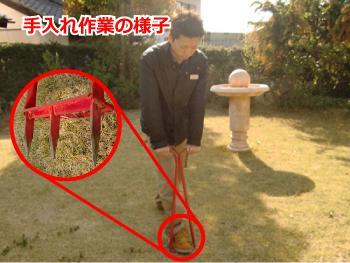 芝 芝生 手入れ エアレーション