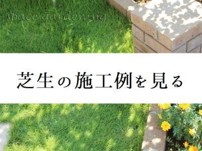 芝生 芝 施工例 庭 デザイン 人工芝