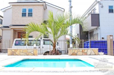 ヤシの木 椰子 ココスヤシ 庭 デザイン ガーデン リゾート
