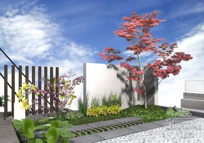 苔 | 庭 | デザイン