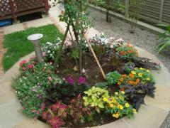 花壇 植栽 下草