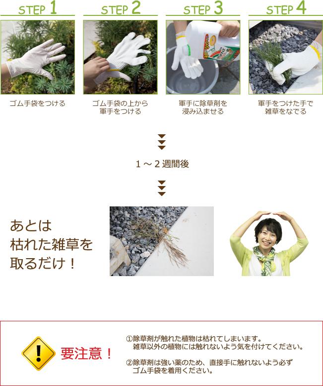 雑草の取り方紹介