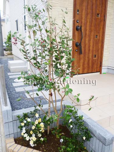 施工例画像:庭木 フェイジョア 船橋市  植栽 庭木 常緑樹 フェイジョア この現場の施工例をも